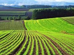 قانون افزایش بهره وری بخش کشاورزی و منابع طبیعی